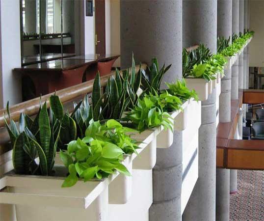 Khloros Interior Landscaping Test